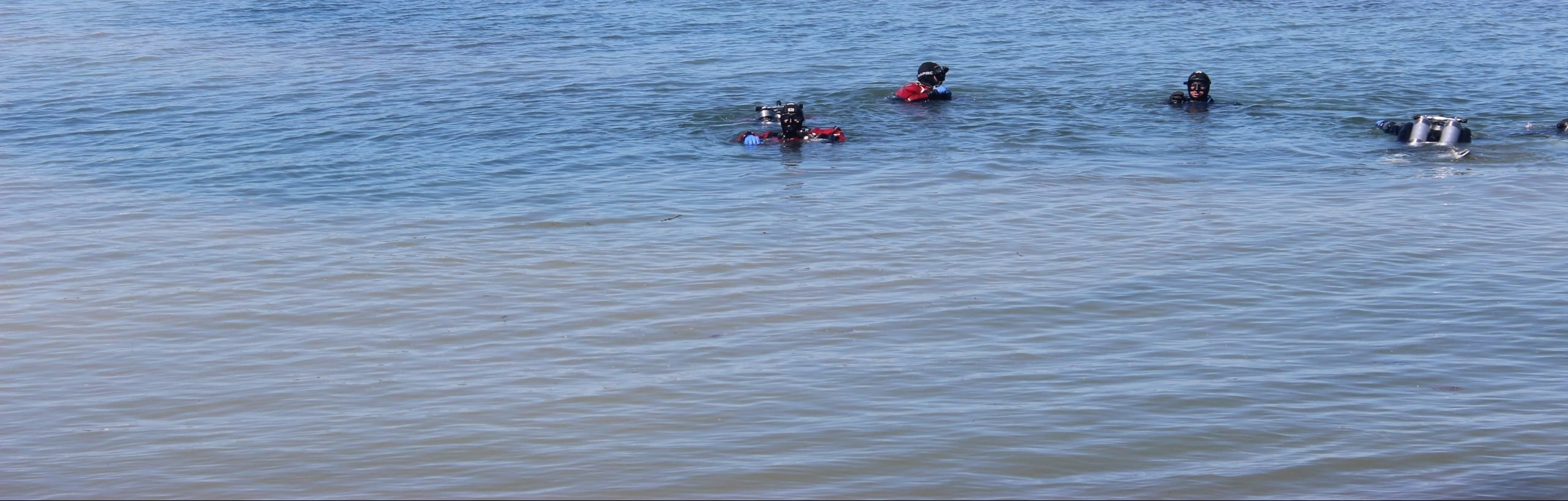 Divers In Water
